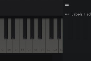 Tiny Piano, Settings for Labels