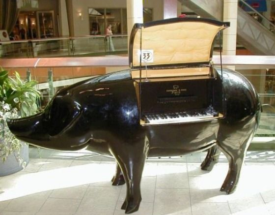 Pig Piano