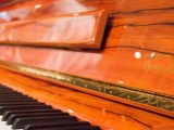 Launch of new Steinway Crown Jewel, Indian Apple K-132