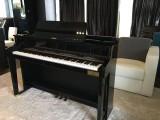 Pianovers Sailaway Pre-Event Shoot, Casio CELVIANO Grand Hybrid GP-500