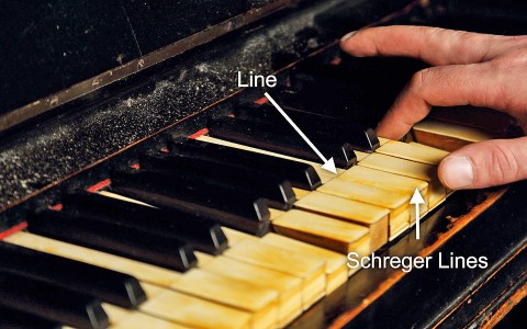 How To Tell If Your Piano Keys Are Made Of Ivory